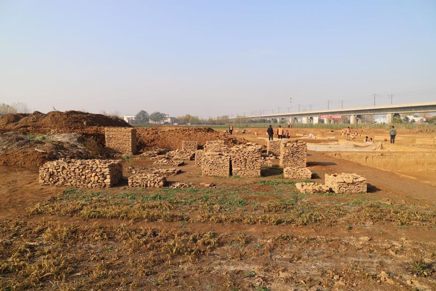 quá trình khai quật ngôi mộ cổ